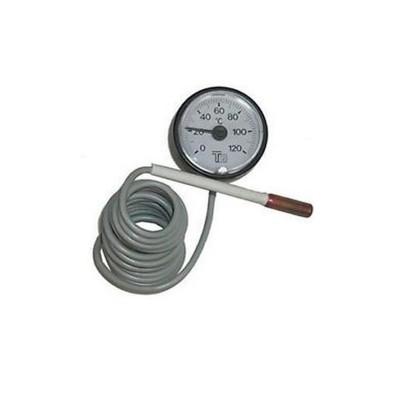 Poza Termometru 120 GRADE CELSIUS DP 25-45 pentru centrala pe lemne Ferroli DP Standard. Poza 8270